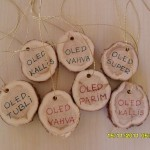MUUDETUD_isade medalid